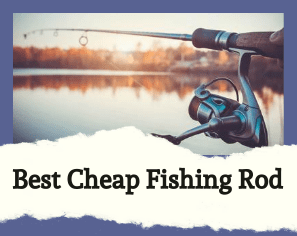 Looking for the best cheap fishing rod? Here's Our List of the Best-Selling Products From Amazon.com